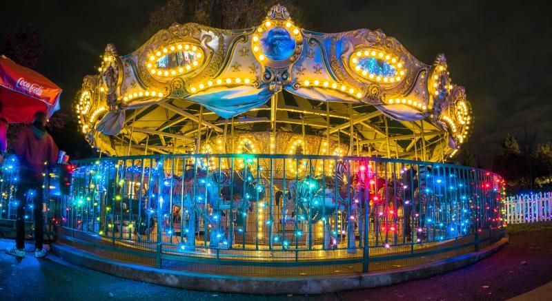 Oakland Zoo Lights 2016