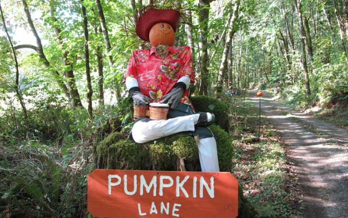 Pumpkin Lane