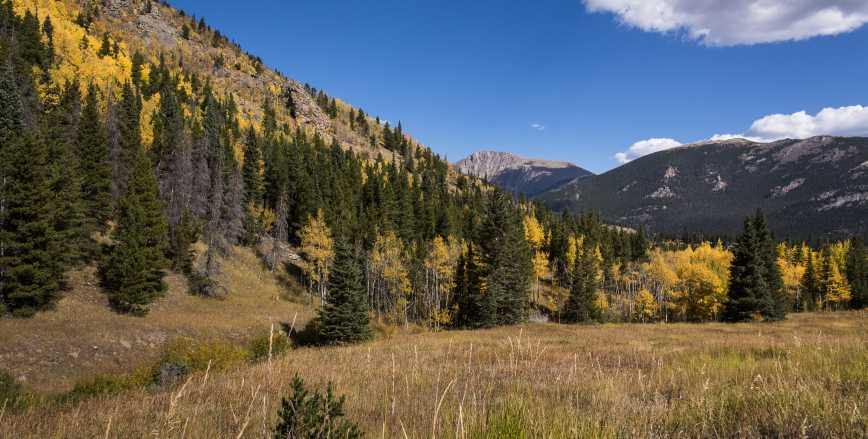 Rocky Mountain National Park Estes Park Wildlife Activities