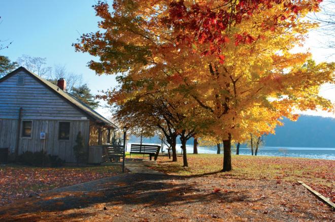 Claytor Lake State Park - Fall Foliage