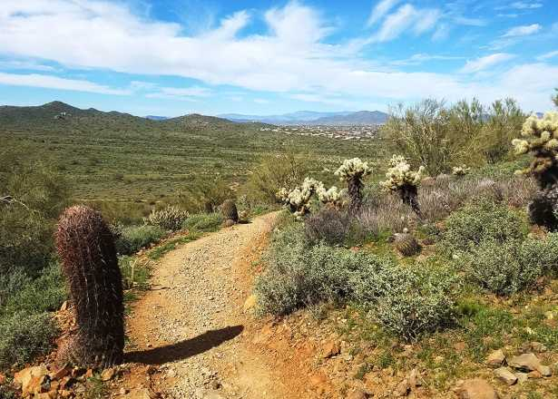 Hiking In Phoenix, Arizona | Pinnacle Peak, Lookout Mountain
