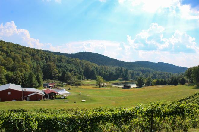 AmRhein Wine Cellars - Roanoke, Virginia