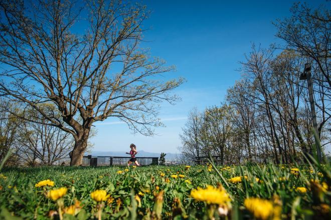 Blue Ridge Marathon - Mill Mountain Park