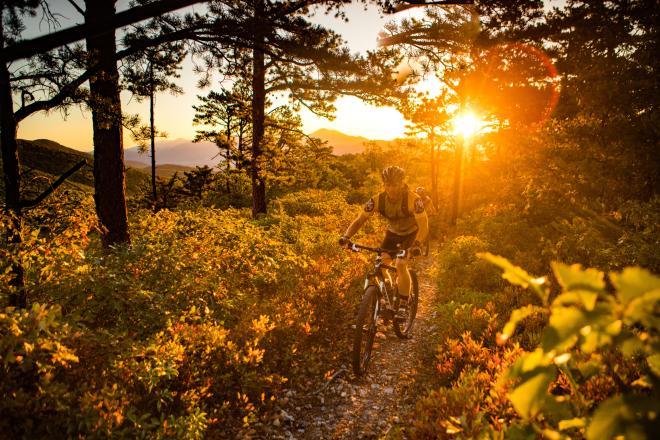 Mountain Biking in the George Washington and Jefferson National Forest near Roanoke, Virginia