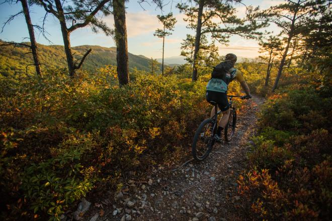Mountain Biking - Roanoke, VA - Blue Ridge Mountains