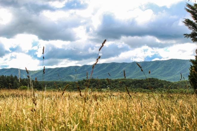 North Mountain - Virginia