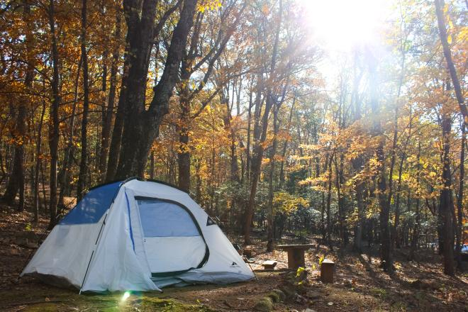 Tent and fall foliage at Peaks of Otter Campground