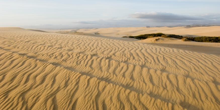 Oceano Nipomo Sand Dunes