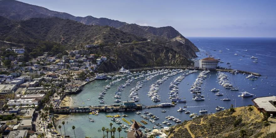 Aerial view of boats moored at the marina at Santa Catalina Island