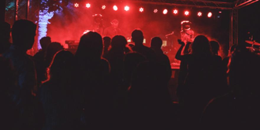 Audience watching live band at the Catalina Wine Mixer at night