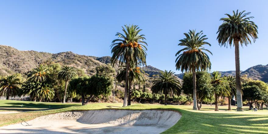 GolfCourse_Greens_2014_3