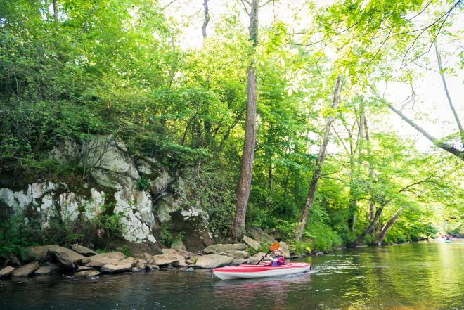 Kayaking the Pigg River - Franklin County, Virginia
