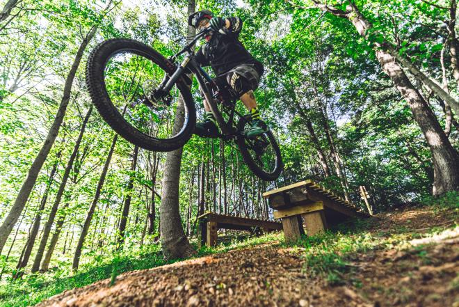 A mountain biker in mid-air after a jump in the forest.