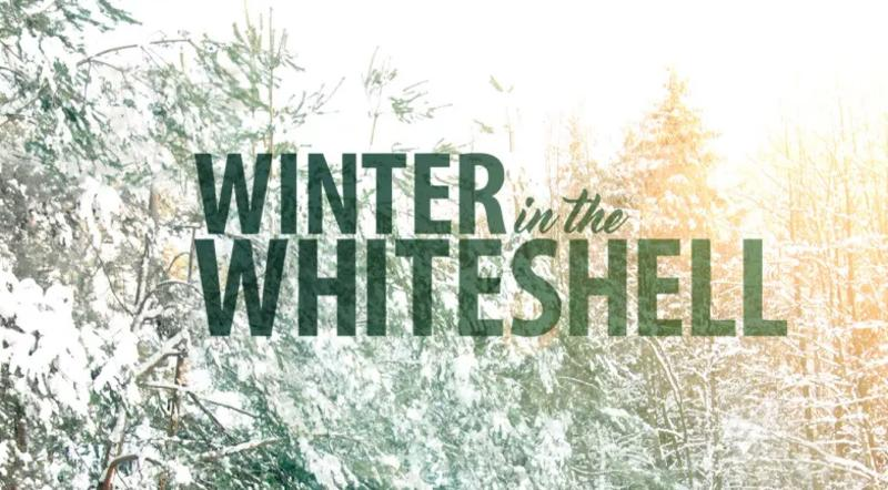 Winter in the Whiteshell