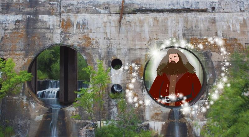 Hagrid at the Pinawa Dam