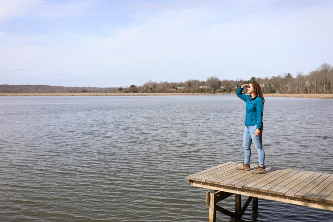 A woman stands at an overlook at Jug Bay Wetlands
