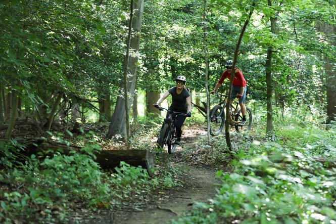 Mountain bikers biking Bacon Ridge Trail in Anne Arundel County.