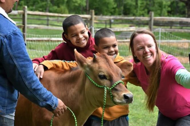 Kids pet animals at Wild kid Acres