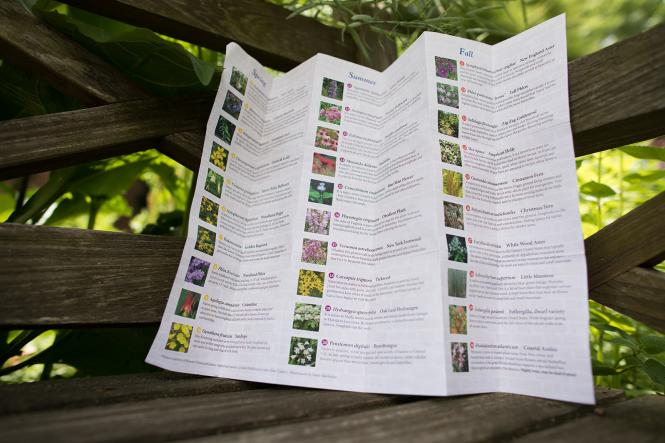 The Chase Home Garden's self guided tour map of foliage and fauna.