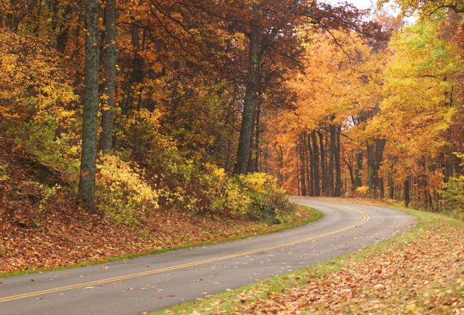 Just A Drive Down Any Road Through Virginia S Blue Ridge Is An Easy Way To See Fall Colors But What The Fun In That Let Us Help You Be Intentional This