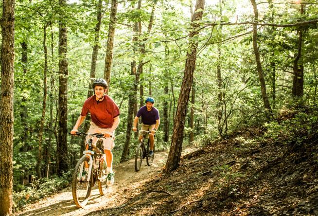 6 Fun Father's Day Experiences in Virginia's Blue Ridge
