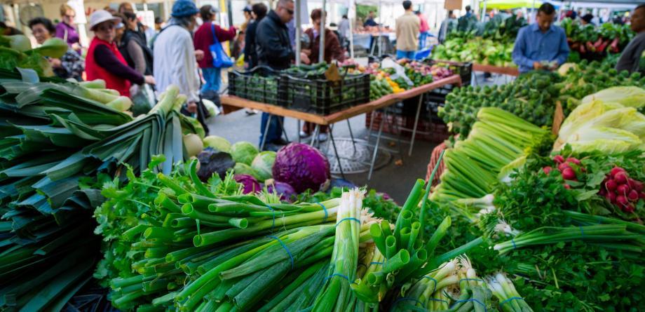 Old Oakland Farmers Market- Veggie Photo