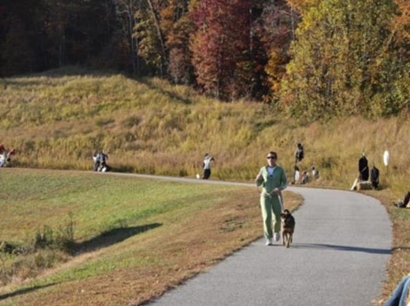 Paved trail with dogs on leashes being walked