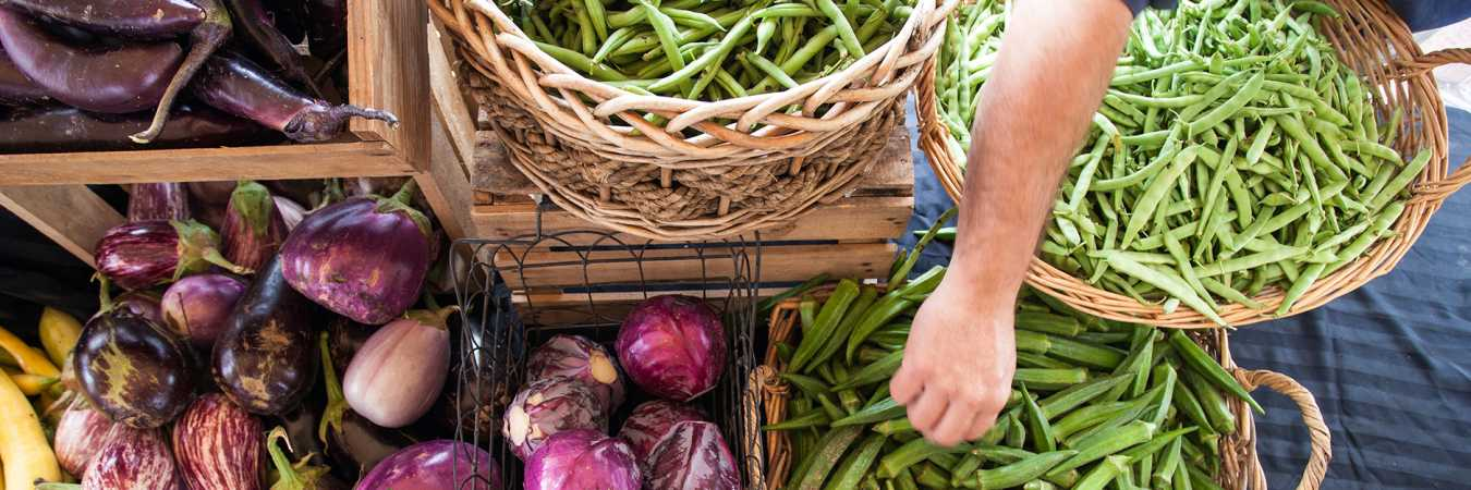 Shop 15 Local Farmers Markets Throughout Hamilton County Indiana