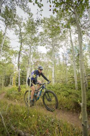 Mountain biking through the aspen trees in Happy Jack Recreational area