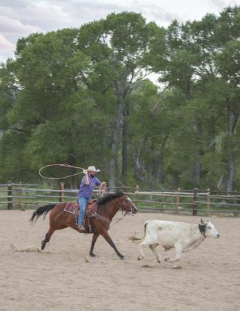Vee Bar Guest Ranch Roping