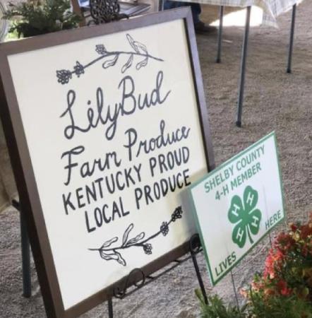 Lily Bud Farm Shelby County Farmer's Market