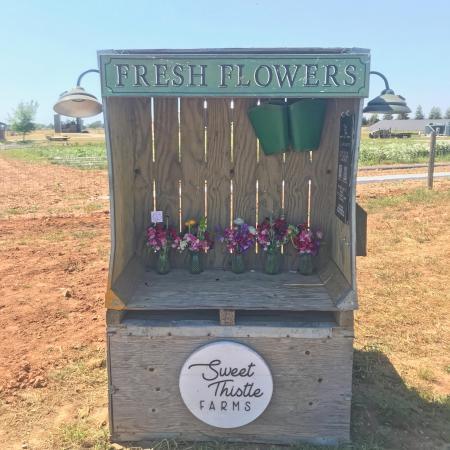 Fresh flowers stand on farm