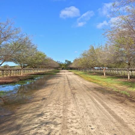 SJRPT Peck Ranch
