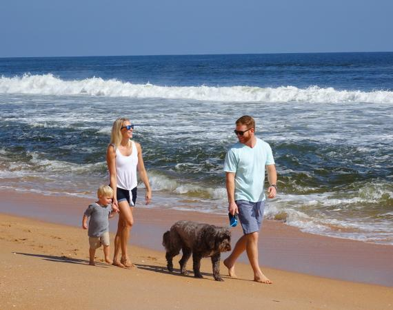 Explore the Beaches in Flagler Beaches and Florida's Palm Coast