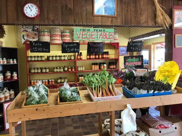 Interior of Morgan's Half Acre Produce Shop