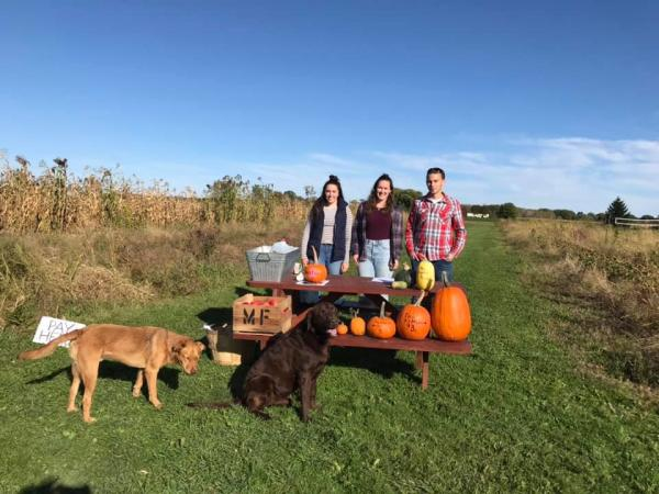 Morgan family with pumpking and pups