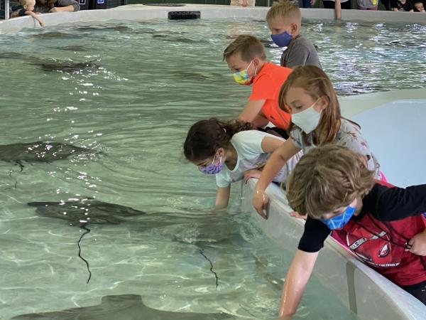 Kids at Stingray Bay at the Columbus Zoo