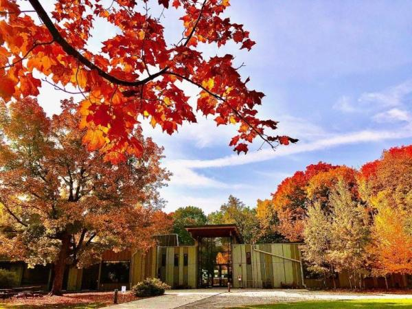 Fall foliage seen in the foreground of a photo showing the Eastman Nature Center in the background