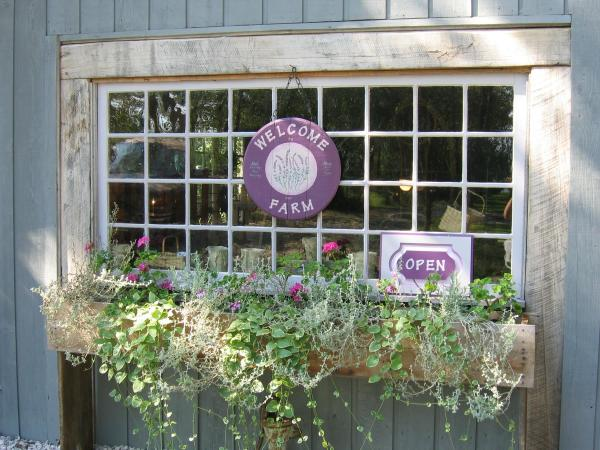 Willowfield Lavender Farm is just one of several attractions your group will love in Morgan County!