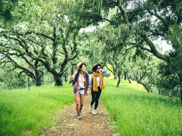 Hiking in Napa Valley