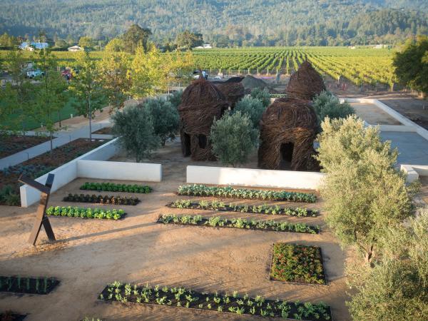 HALL Wines Gardens