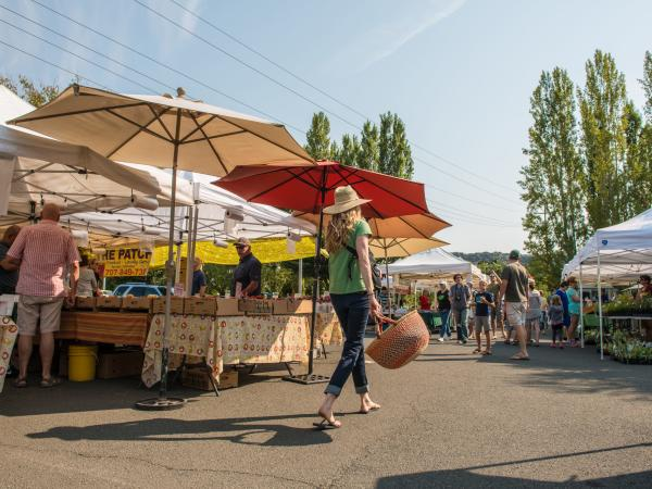 Shoppers peruse the bounty of local produce found at a Napa Valley Farmer's Market