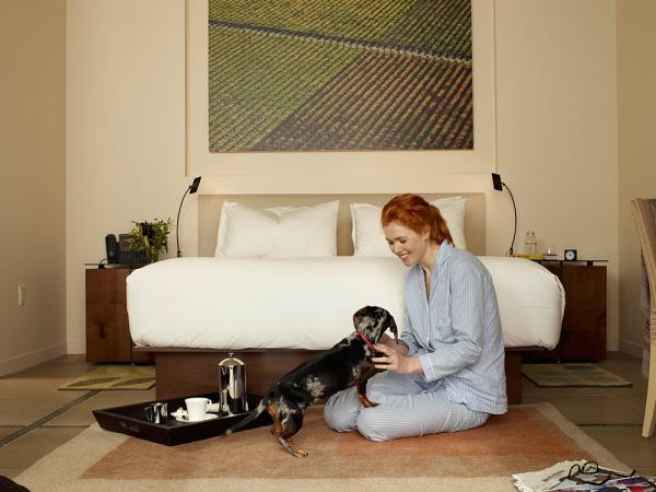 Pet-Friendly Hotels in Napa Valley – Bardessono