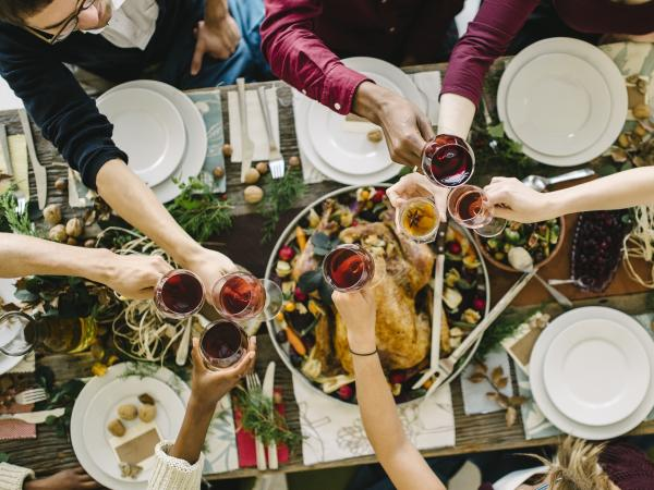 People Toasting Over Thanksgiving Dinner in Napa Valley