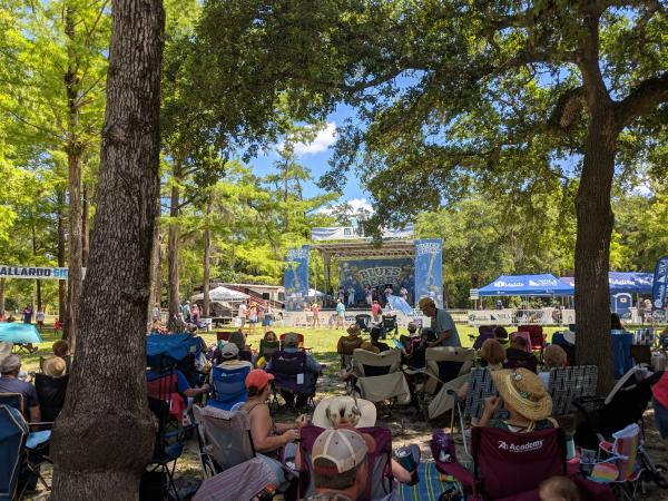 Crowd looking at stage at Bluesberry Festival