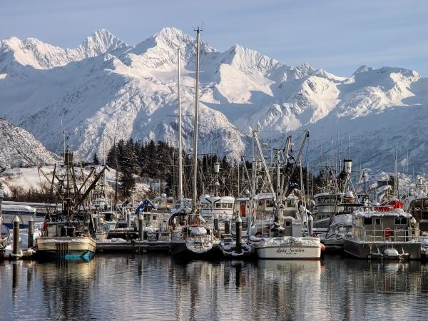 a boat harbor with snow-covered mountains in the background