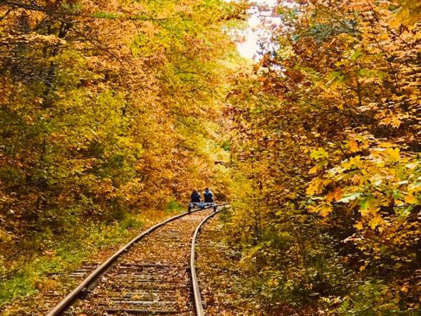 Scenic RailRiders Fall Foliage
