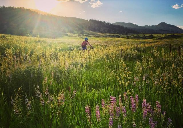 5 Places to Bike and Brew in Fort Collins