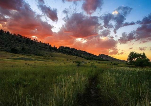 Pineridge Natural Area wmorleyphotography