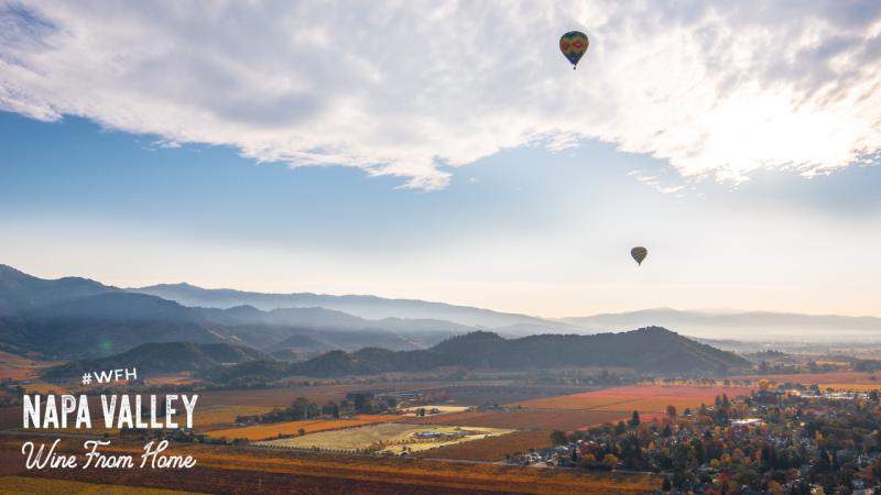 Napa Valley Zoom Background Fall Hot Air Balloons